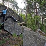 Sami Kiiskinen